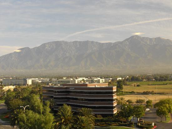 Ontario International Airport Hotel: View from the 10th floor.