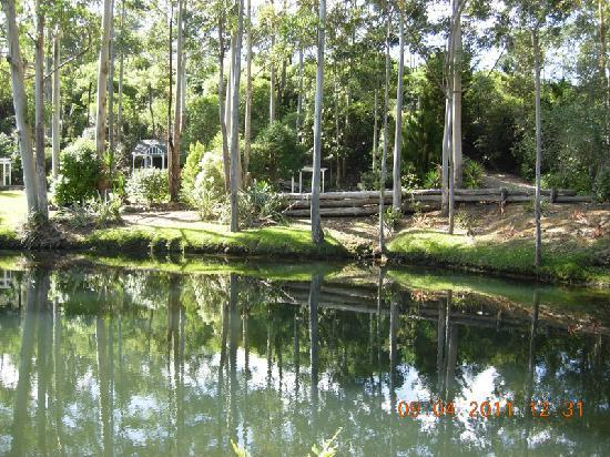 Orchid Grove Country Lodge: lake
