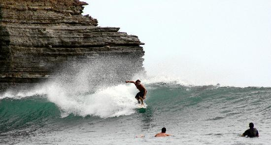 Gigante Bay: Surf Tours & Lessons