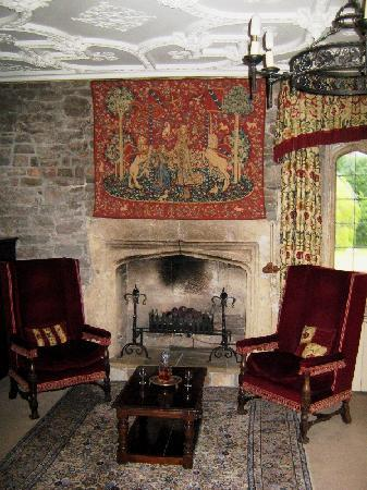 Thornbury, UK: One of the fireplaces in the room