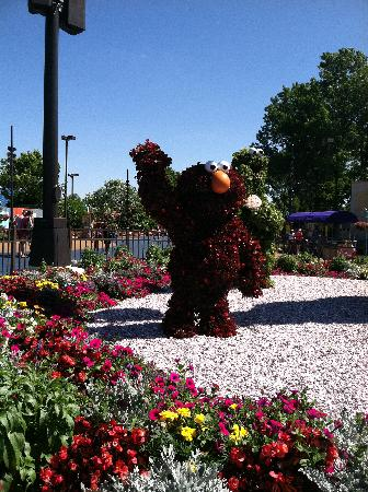 Langhorne, PA: Elmo greats you at the park entrance! Lots of flowers in the park - many of which smelled quite