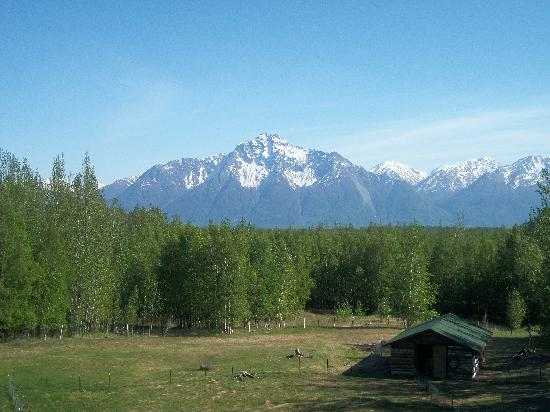 Alaska&#39;s Harvest B&amp;B: The view from the deck of the Pioneer Suite.