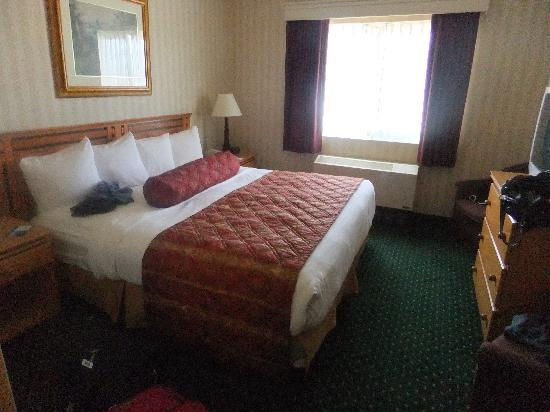 Quality Suites Near Convention Center: The room