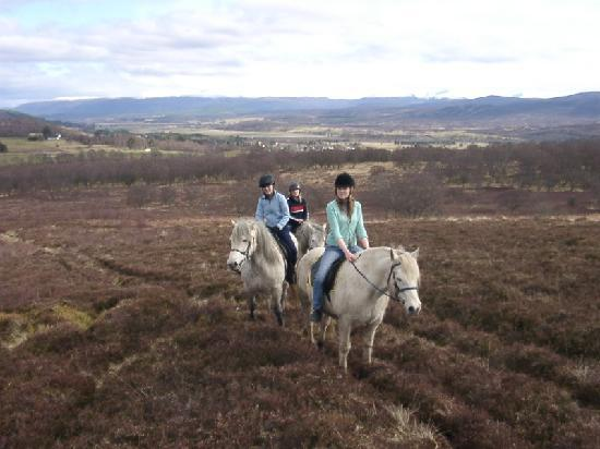 Newtonmore Riding Centre: Looking over Newtonmore