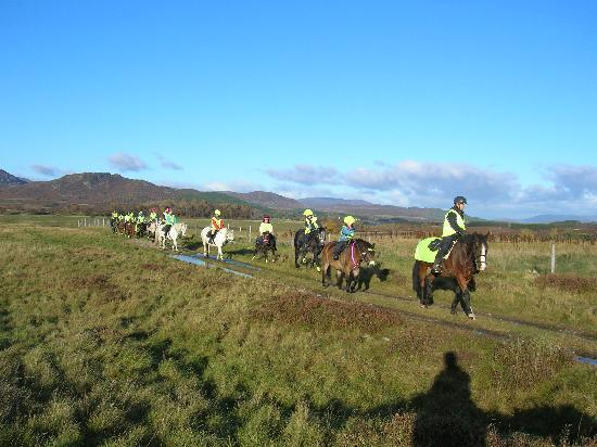 Newtonmore Riding Centre: A lunch stop