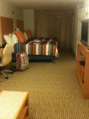 HYATT house Dallas/Richardson: Large room, very clean