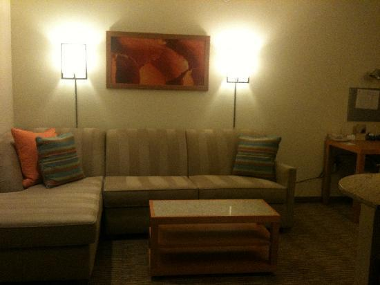 HYATT house Dallas/Richardson: Pull out couch/Sleeper