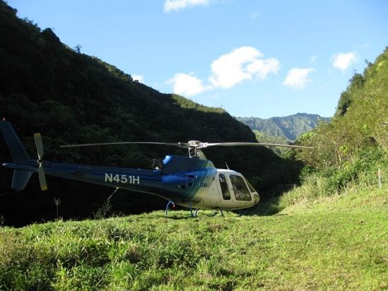 jack harter helicopter tours with Helicopter Tour Kauai Reviews on Helicopter Tour Guide Jobs in addition Private Helicopter Kauai likewise Top Things To Do On Kauai 1533106 moreover LocationPhotoDirectLink G60623 D526191 I290398789 Jack Harter Helicopters Tours Lihue Kauai Hawaii moreover 29.