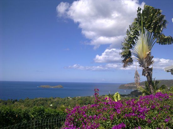 Photo of Le Jardin Tropical Guadeloupe