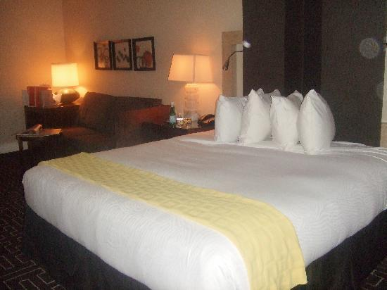 Hotel Palomar Dallas - a Kimpton Hotel: Slept beautifully