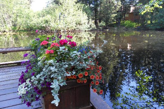 Pearson's Pond Luxury Inn and Adventure Spa: Loved the flowers everywhere