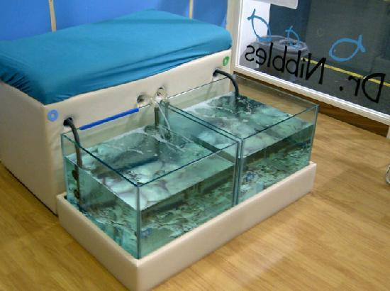 Dr nibbles garra rufa spa liverpool picture of dr for Fish pedicure nyc