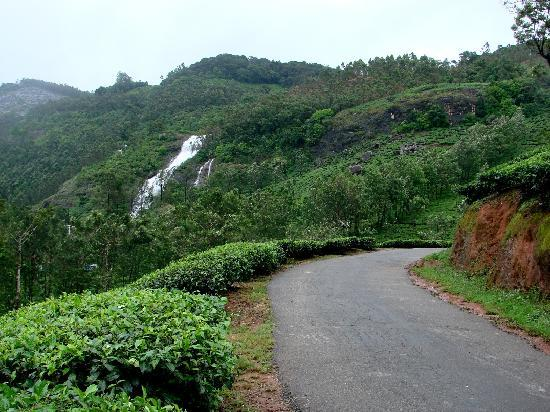 Chinnakanal, Indien: Nearby falls, you cross it on way to Munnar