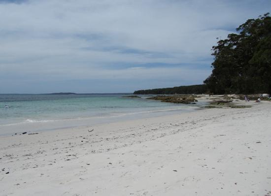 Sandholme Guesthouse: A view of Jervis Bay not too far from the guesthouse!