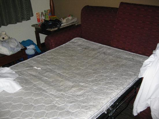 La Quinta Inn San Diego Mission Valley: pull out bed filthy
