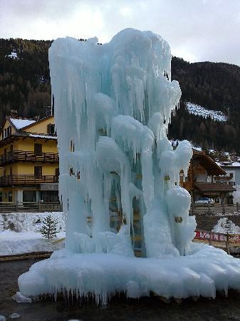 Moena