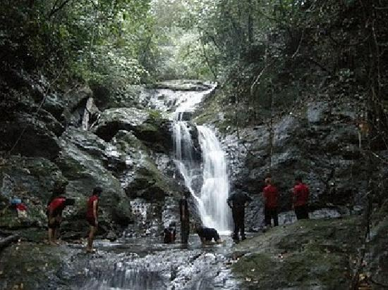 Sabah, Μαλαισία: Water Catchment at the Crocker Range Jungle