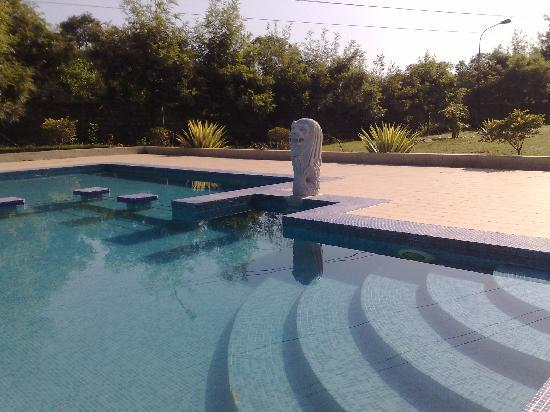 Country Inn & Suites By Carlson, Vaishno: Swimming Pool