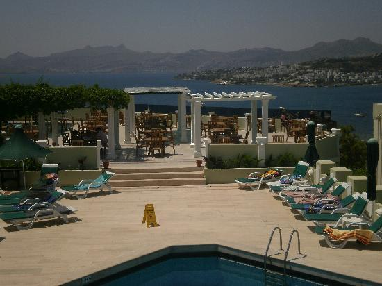 Bitez, Turkey: View of the terrace from my sunbed by the main pool.