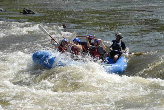 French Broad Rafting and Ziplines