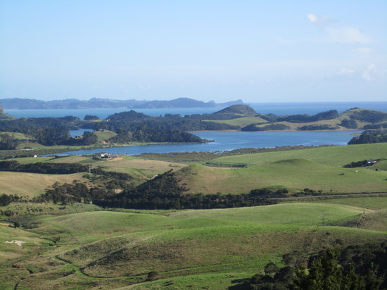 Whangarei, Yeni Zelanda: view