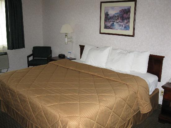 Comfort Inn Vail Valley: Room 211 - Bed