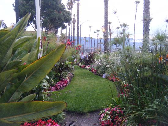 Lovely gardens at West Beach Inn.