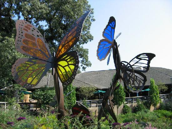 The Butterfly Conservatory Picture Of Henry Doorly Zoo