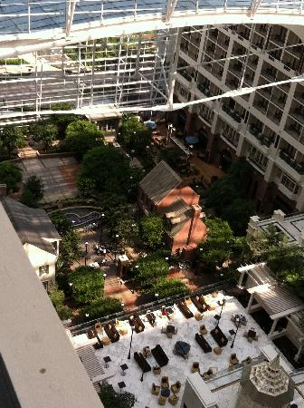 Atrium view from 18th floor balcony picture of gaylord for 18th floor balcony video