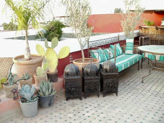 Riad Yasmine: Rooftop terrace (the turtle lives here)