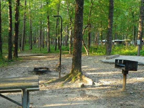 Bismarck, AR: Degray state park campgrounds