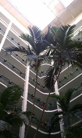 Embassy Suites Hotel McAllen: A view inside the lobby