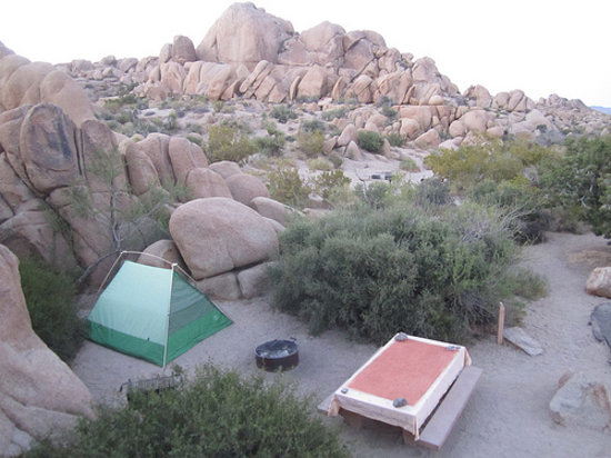 Jumbo Rocks Campground: Super cool place to camp.