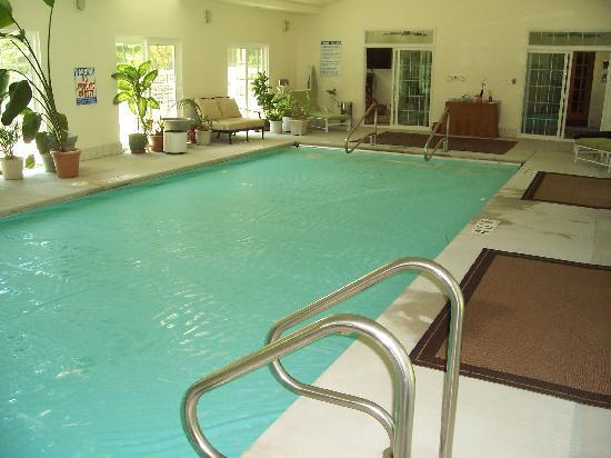 Ye Olde Manor House Bed and Breakfast: The indoor pool