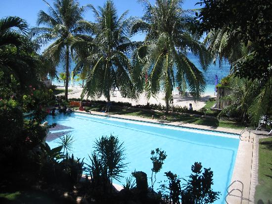 Bohol Divers Resort: Pool