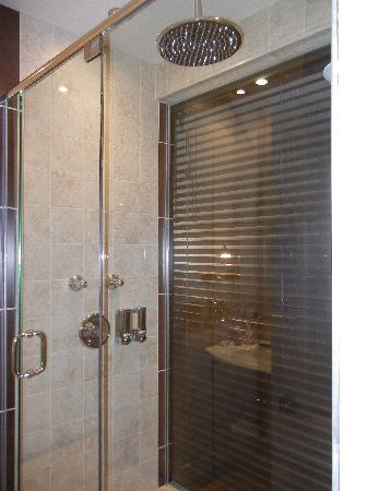 Auberge Le Vincent: Rain showerhead