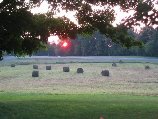 Moore's Hill Bed and Breakfast: Sunrise at haying time on Moore's Hill
