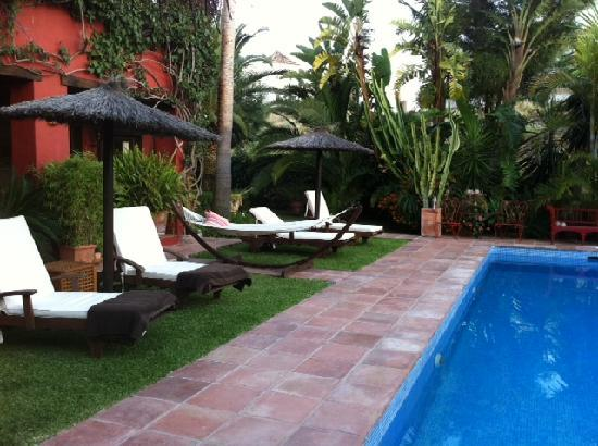 B&amp;B Casa Las Palmeras: Patio chairs by the pool.