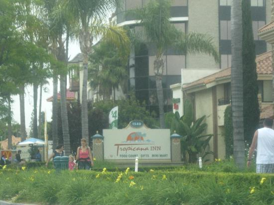 Tropicana Inn & Suites: Coming from Katell to S Harbor