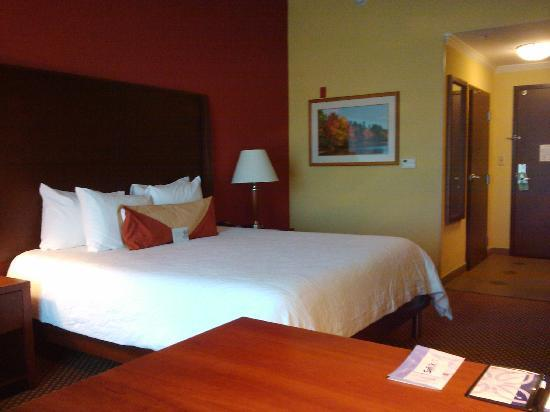 Hilton Garden Inn Houston West Katy Mills: Habitación: 1 King Evolution Room