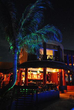 Villa La Bella: Pool lights up the big palm tree in front of the dining area.
