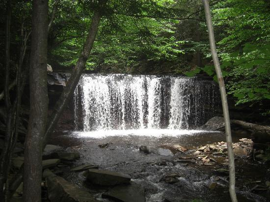 Ricketts Glen State Park Campground