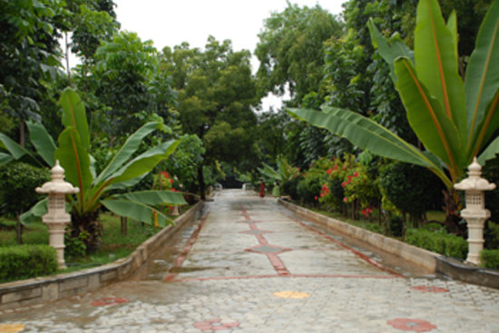 Pragathi Greenmeadows Resorts