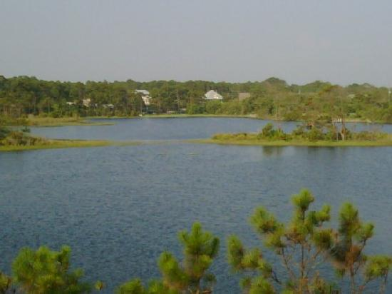 View from the screened porch for Marys fish camp fl