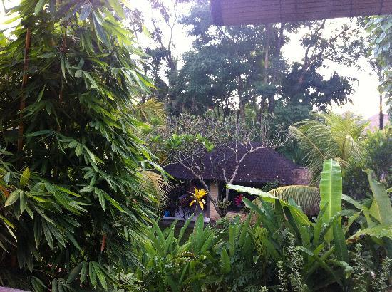 Ubud Dream: Garden off the balcony