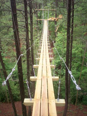 Ocoee River Basin Canopy Tour