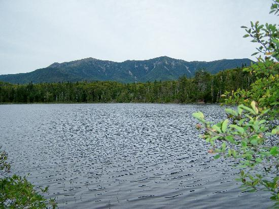 Six Chimneys & A Dream: Lonesome Lake--a great hike a half hour north of us in Franconia Notch State Park.