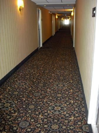 Hampton Inn &amp; Suites Ephrata : 4th floor hallway 