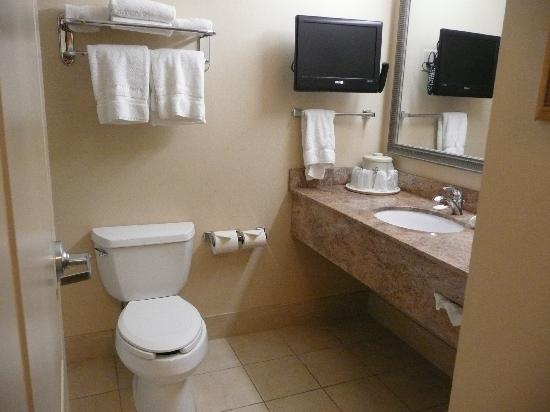 Holiday Inn Express Hotel & Suites Winona: Bathroom