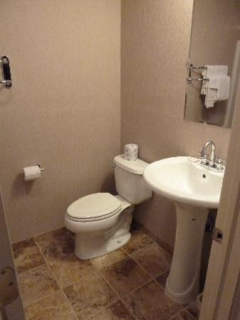 Americas Best Value Inn: Bathroom